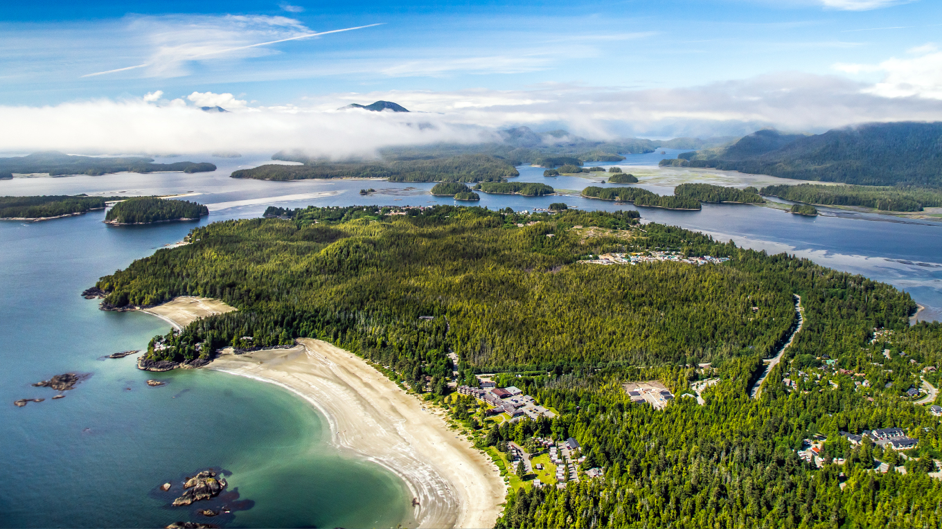 Tofino Harbour – Harbour Air: North America's Largest Seaplane Airline –  Since 1982